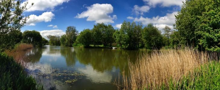 Willowfield Lake
